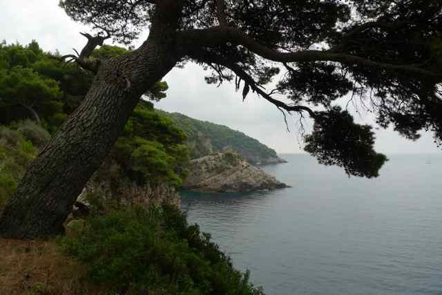 Kolocep Island